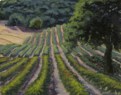 Afternoon on Vineyard Road by Terry Lockman