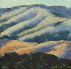 Afternoon Shadows Lucas Valley by Terry Lockman