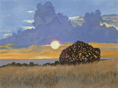 Fall Evening, Foothills by Terry Lockman