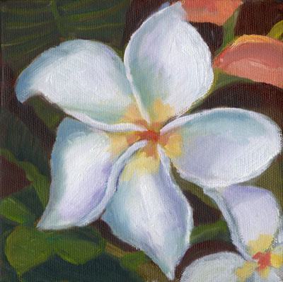 Kauai Plumeria by Terry Lockman