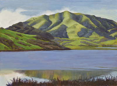 Late Winter Reflections Nicasio by Terry Lockman