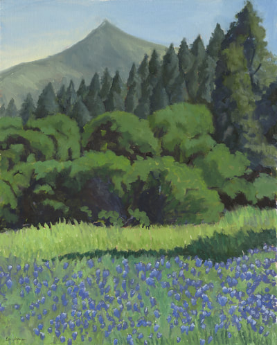 Lupine at Lake Lagunitas by Terry Lockman