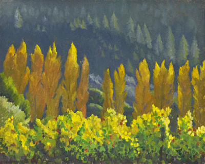 Luscious Light West of Healdsburg by Terry Lockman