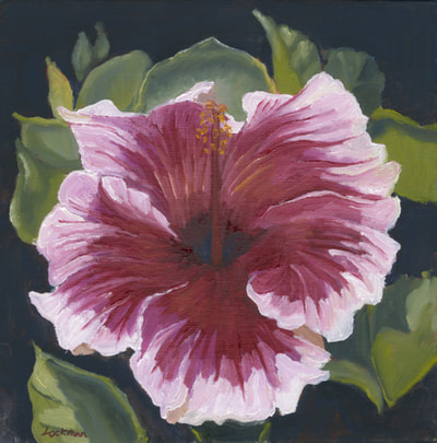Magenta Hibiscus by Terry Lockman