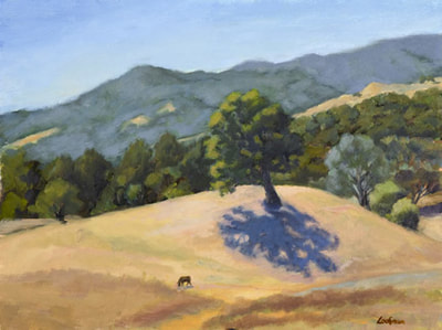 Morning Shadows, Chimney Rock Road by Terry Lockman