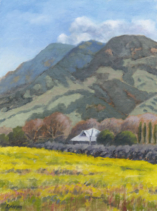 Mustard Beneath Mt. Helena by Terry Lockman