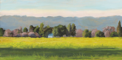 Mustard South of Sonoma by Terry Lockman