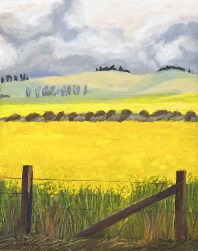 Mustard West of Petaluma by Terry Lockman