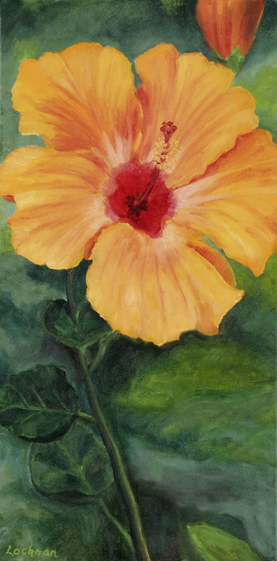 Orange Hibiscus by Terry Lockman
