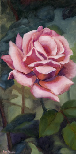 Pink Rose by Terry Lockman
