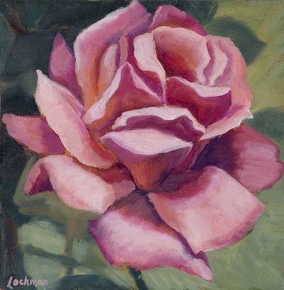 Pink Rose II by Terry Lockman