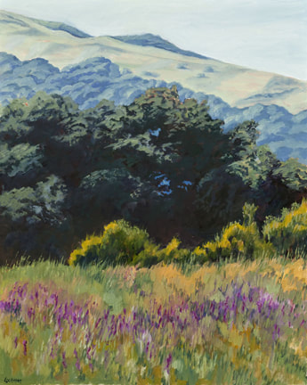 Spring Flowers, Marin Hills by Terry Lockman