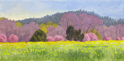Spring Colors West of Healdsburg  by Terry Lockman