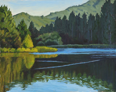 Stillness Lake Lagunitas by Terry Lockman