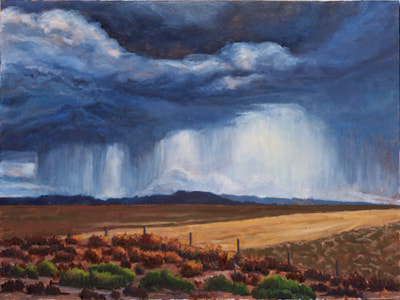 Summer Downpour Utah by Terry Lockman