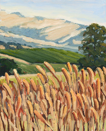 Summer Grasses, Napa by Terry Lockman