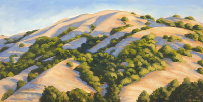 Summer Shadows, Lucas Valley by Terry Lockman