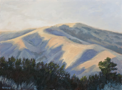 Winter Glow, Loma Alto Ridge by Terry Lockman